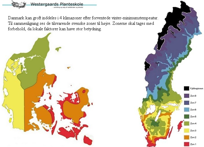 climatezones in denmark